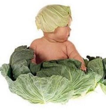 BABY WADO ? ? ?