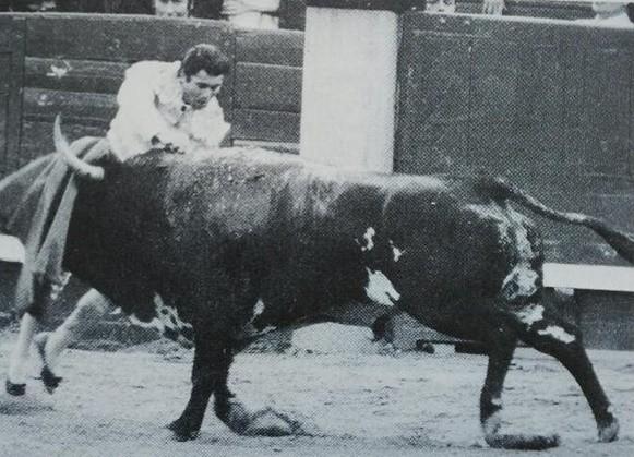 """MADRID 24 MAI 1979 BUENASUERTE DONT LES 2 OREILLES ONT ETE COUPEES PAR FRANCISCO RIVERA PEREZ """"PAQUIRRI"""" (1948 - 1984)"""