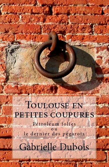 Roman historique Toulouse, Gabrielle Dubois, littérature régionale, littérature Sud-Ouest, histoire de Toulouse