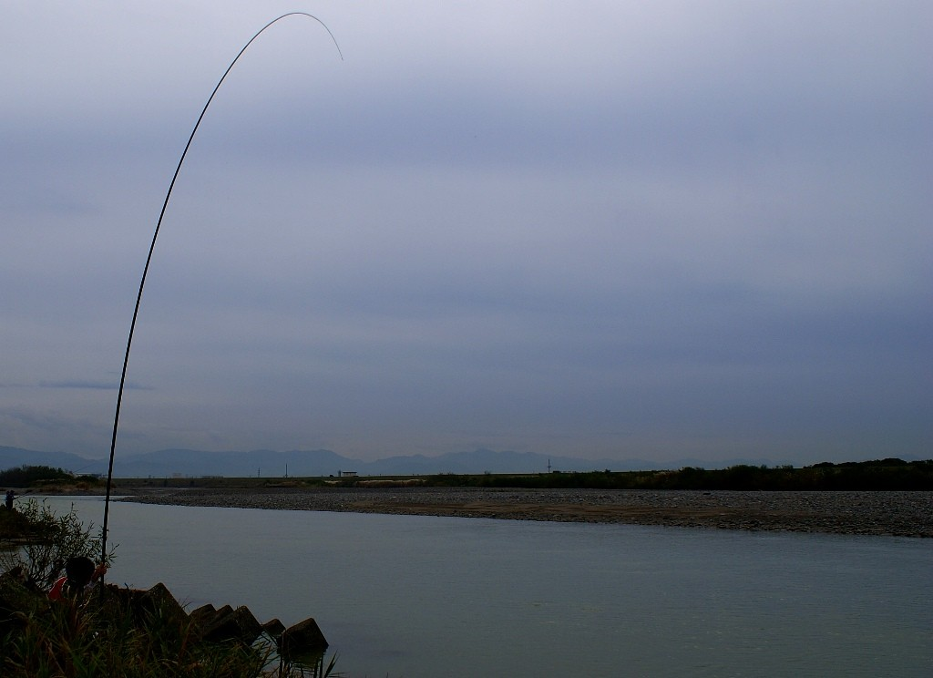 RUDOW8500でのサケ釣り、寄せ