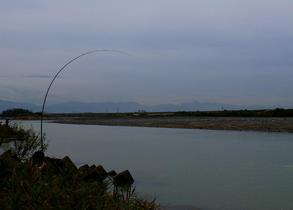 本流竿RUDOW8500のサケ釣りでの曲がり