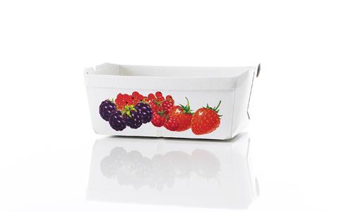 Trays, konische Schalen mit Beschichtung bedruckt - Unsere Trays, auch Kartonschalen genannt, sind idealer Werbeträger für Obst-, Gemüse- & Fleischprodukte. Wiederverwendbar, recycelbar & mikrowellentauglich von RATTPACK®