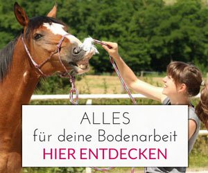Mit einem *Klick auf das Bild kommst Du direkt zum pferdefreundlichen Shop der Pferdeflüsterei!