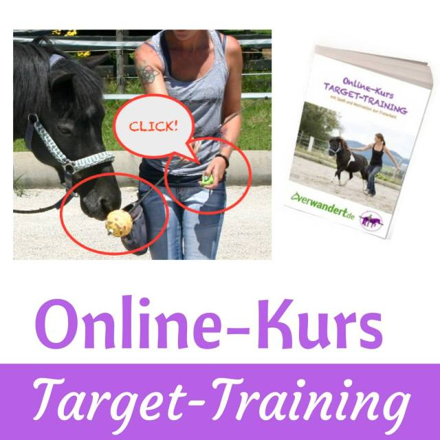 Targettraining Pferd positive Verstärkung