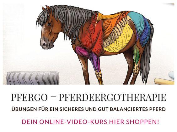 PFERGO Pferdeergotherapie - Ergotherapie für Pferde: Mit unserem Online-Videokurs bekommst Du viele Tipps und Tricks, um Dein Pferd gesunderhaltend zu trainieren - damit es nicht nur gelassener, sondern auch trittsicherer wird!