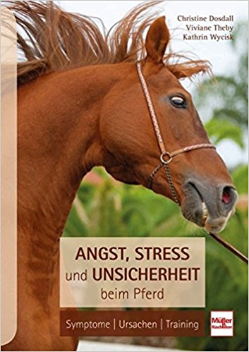 Angst Stress Unsicherheit beim Pferd