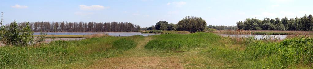 Nationaal Park De Biesbosch (Pays Bas) Juin 2011 - Vue panoramique