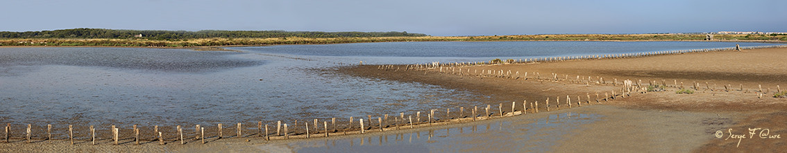 Anciens marais salants à la Sansouïre (Frontignan - Hérault - France) - Vue panoramique