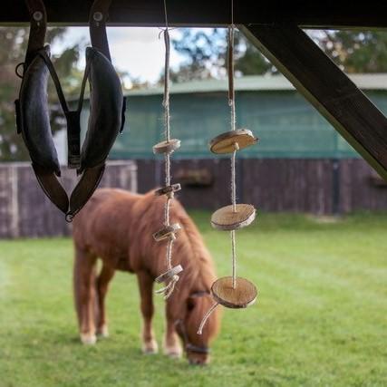 Pferdespielzeuge aus Holz