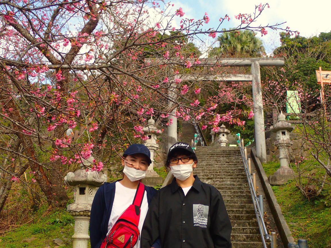 1月24日、今が旬のお花見さんぽ!