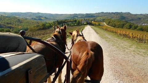esperienze umbria escursioni fantastiche in umbria con bimbi in umbria estate in umbria vacanze agosto in umbria