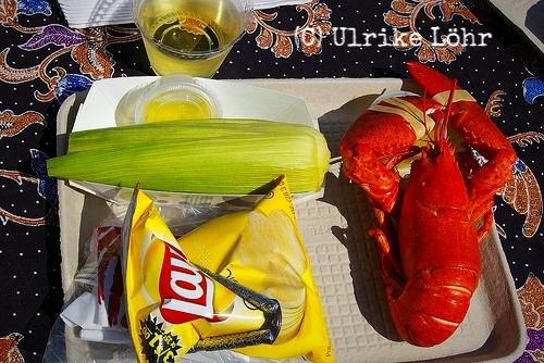 Hummer Picknick (USA, Neuenglandstaaten)