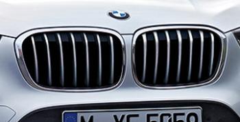 BMWキドニーグリル