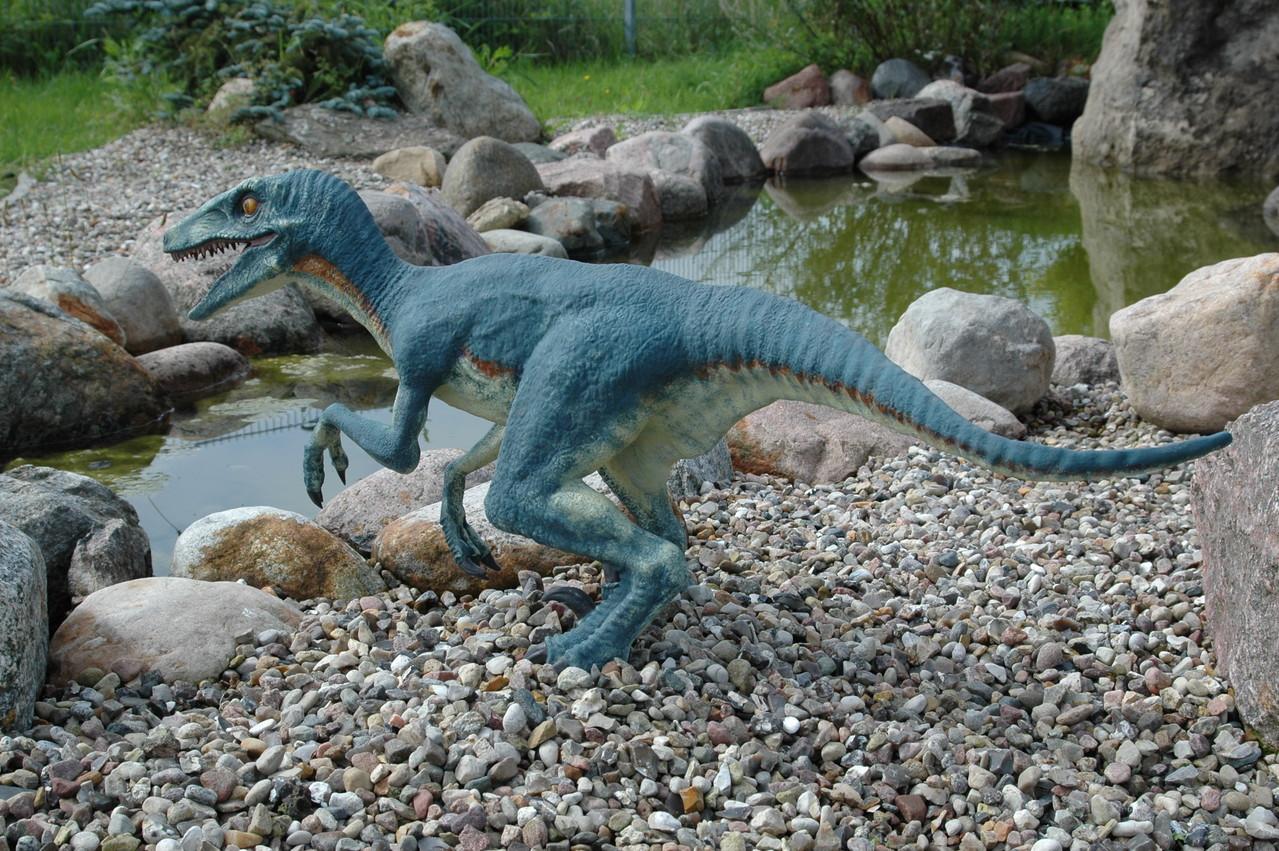 Raptor lebend Nachbildung