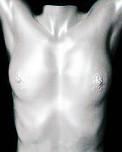Körperabformung weiblicher Torso