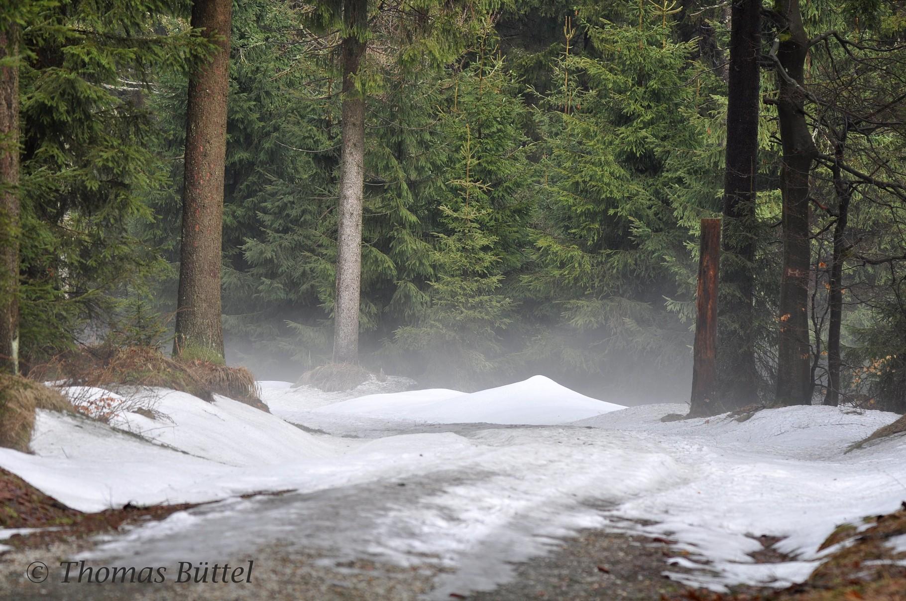 Schnee auf dem Wanderweg