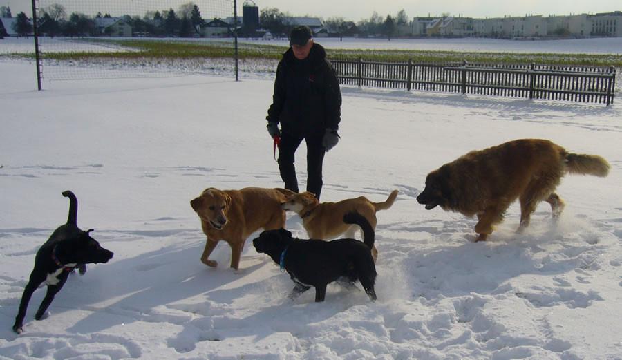 auch im Schnee gibt es nichts bessers als Freunde treffen