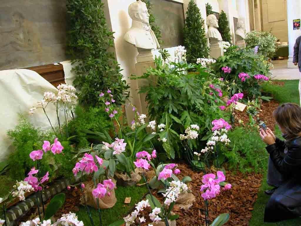 Faculté de Pharmacie Paris 8 - Exposition 2008