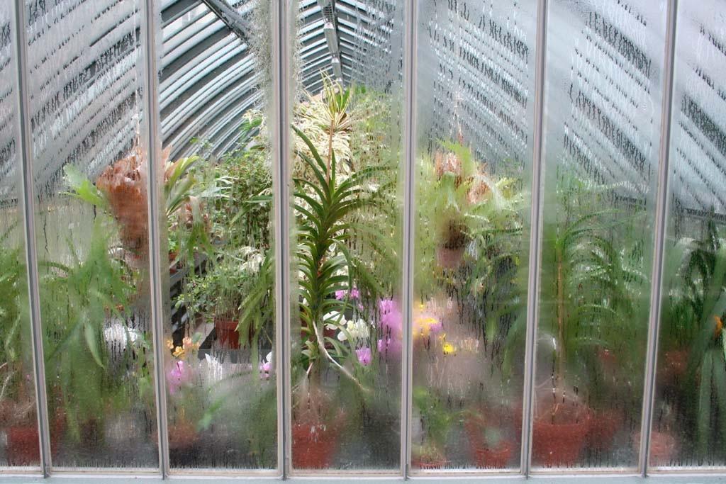 Serre - Faculté de Pharmacie Paris 8 - Exposition 2008