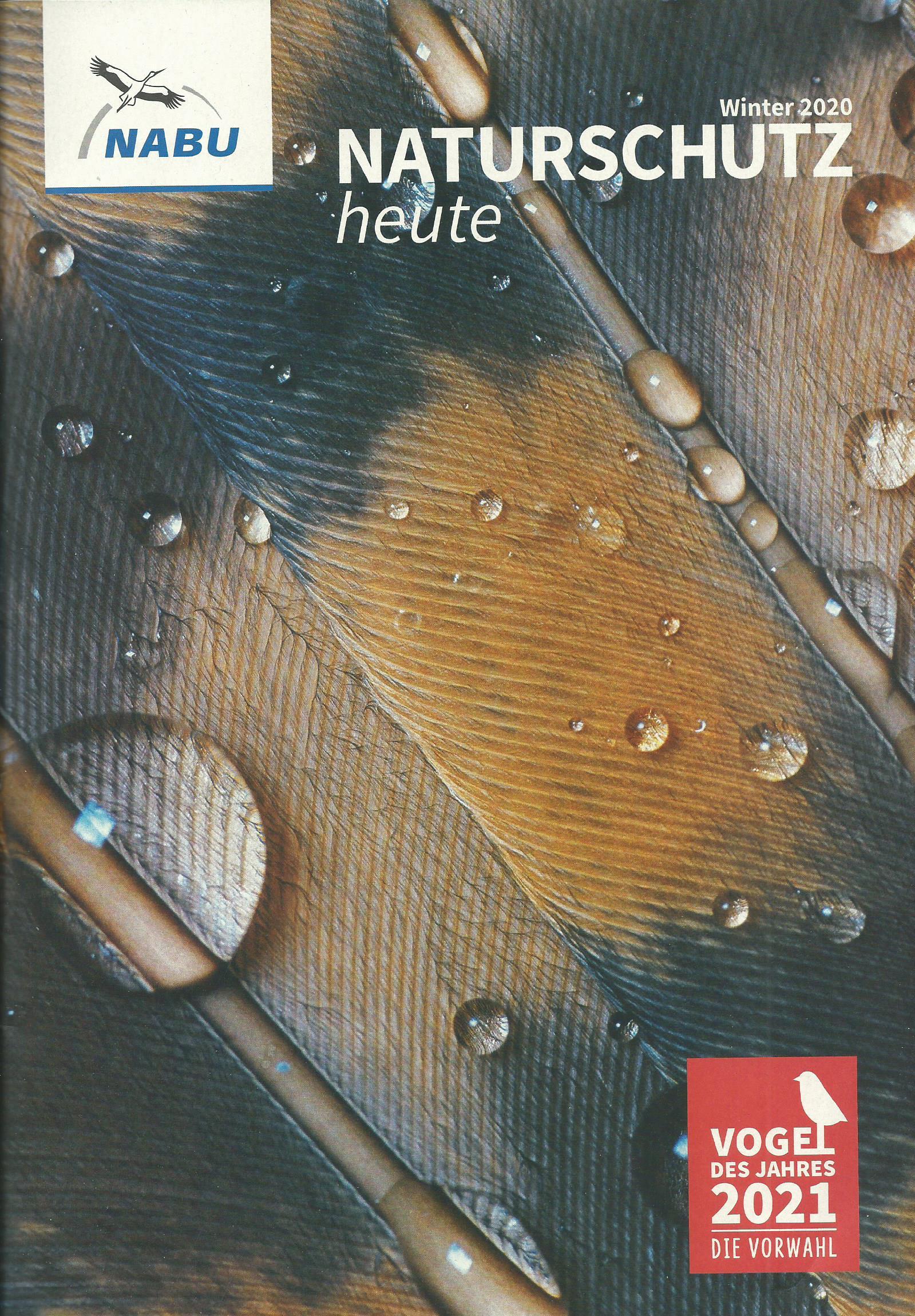 """Foto:  links, Programmflyer mit Veranstaltungstipps, rechts, die Verbandszeitschrift """"Naturschutz heute"""""""