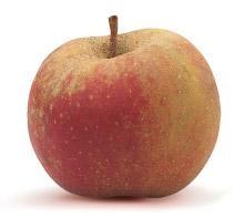 Pommes de la maison Gerday (Verlaine sur Meuse)