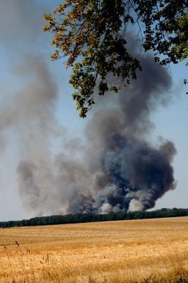 Rauchsäule über einem Wald (Bild: Windrose / pixelio.de)