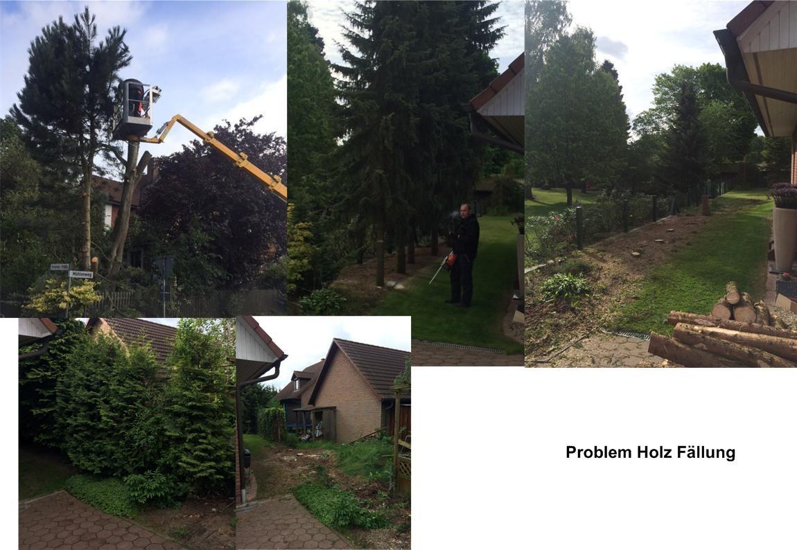Garten- und Landschaftsbau - lohnarbeit-schmidts Webseite!