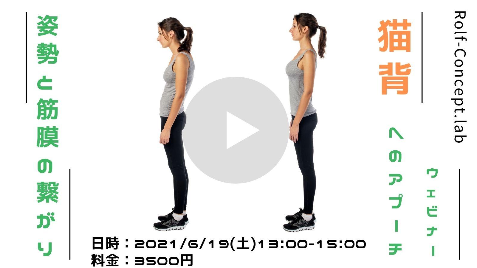 2021/6/19(土) 「姿勢と筋膜の繋がり 猫背へのアプローチ」ウェビナー