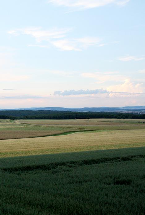 Then-Landwirtschaft Region