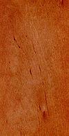 Erle - braun-rötlich - weich - Möbel