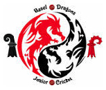 Basel Dragons Junior Cricket