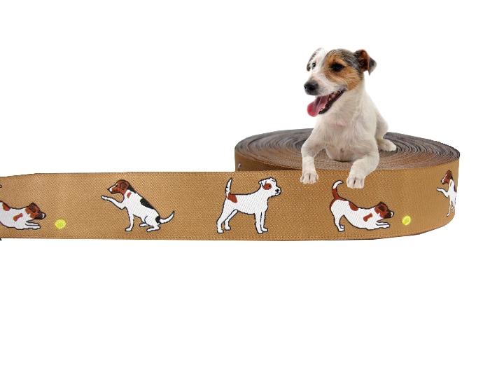 Parson Jack Russell Terrier Webband Borte Hund Hunde Jackie Borten