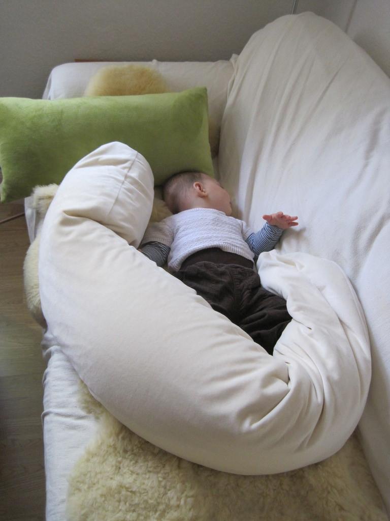 帰宅。フェデリコお昼寝。
