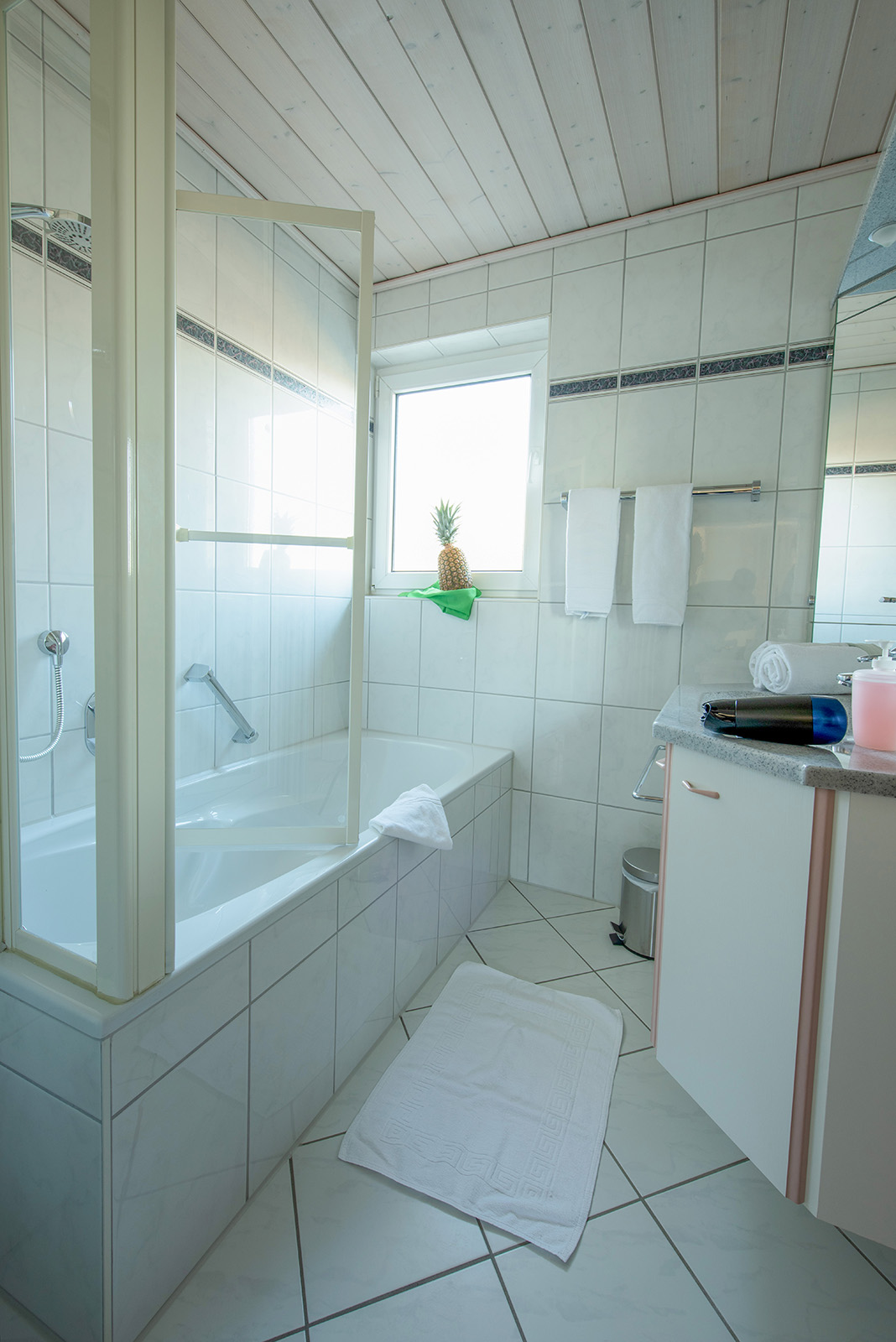 Holiday apartments on Lake Constance: Ittendorf - Bathroom