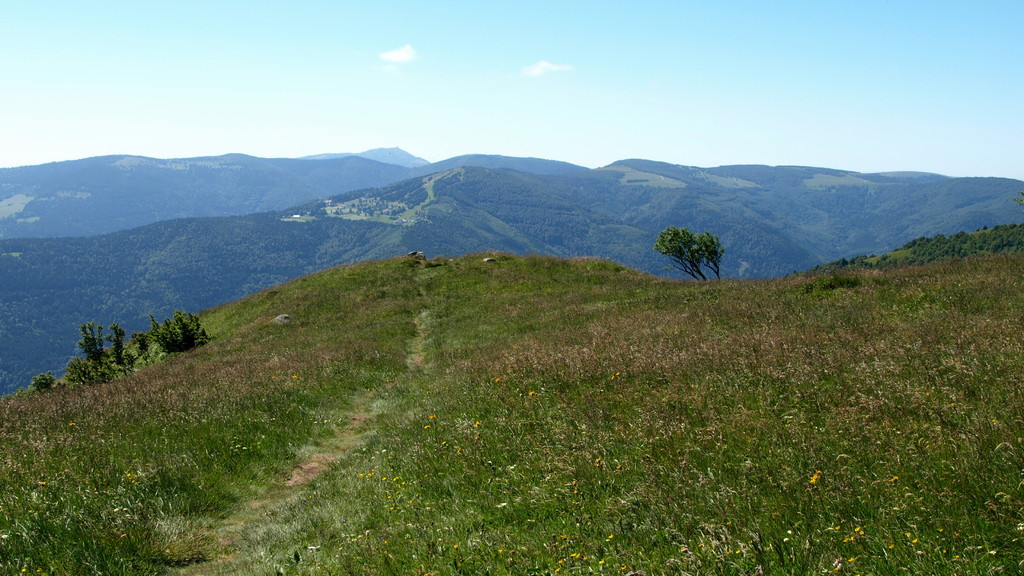 Schnepfenried et Grand Ballon