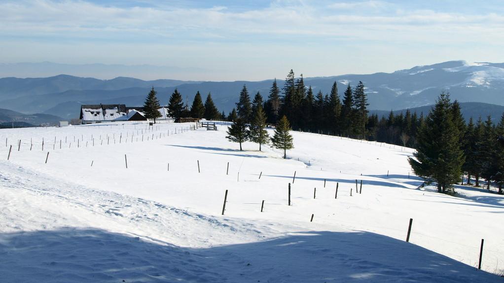 Schupferen en hiver
