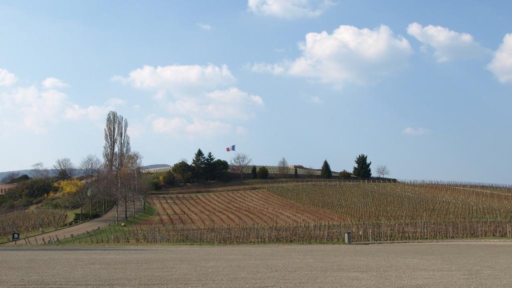 La nécropole de Sigolsheim