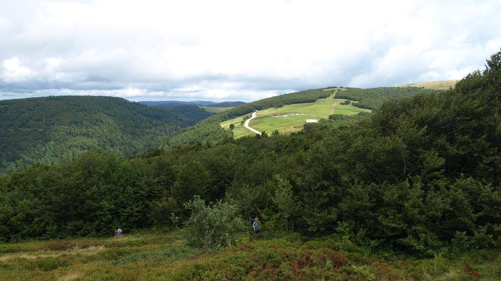 Collet du Rainkopf, vue sur Firstmiss