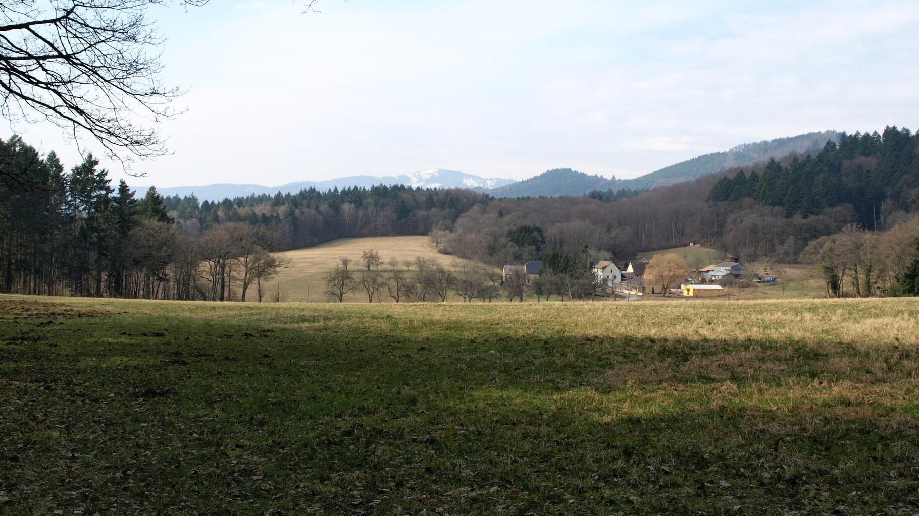 Osenbuhr