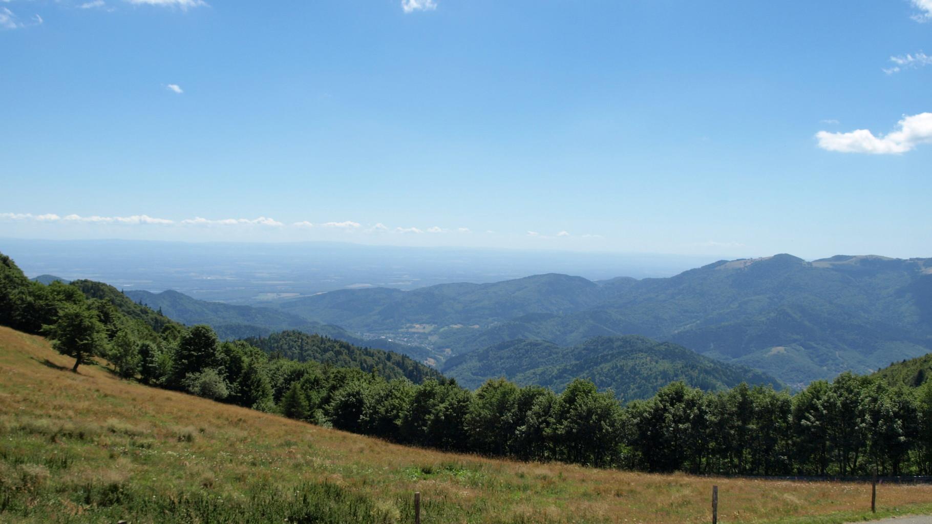 Vallée de Thann