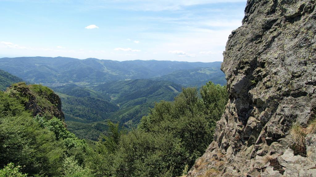 Vogelstein