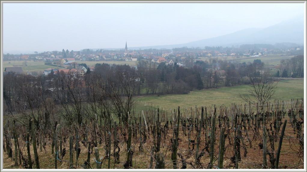 Mannberg, vue sur Wuenheim