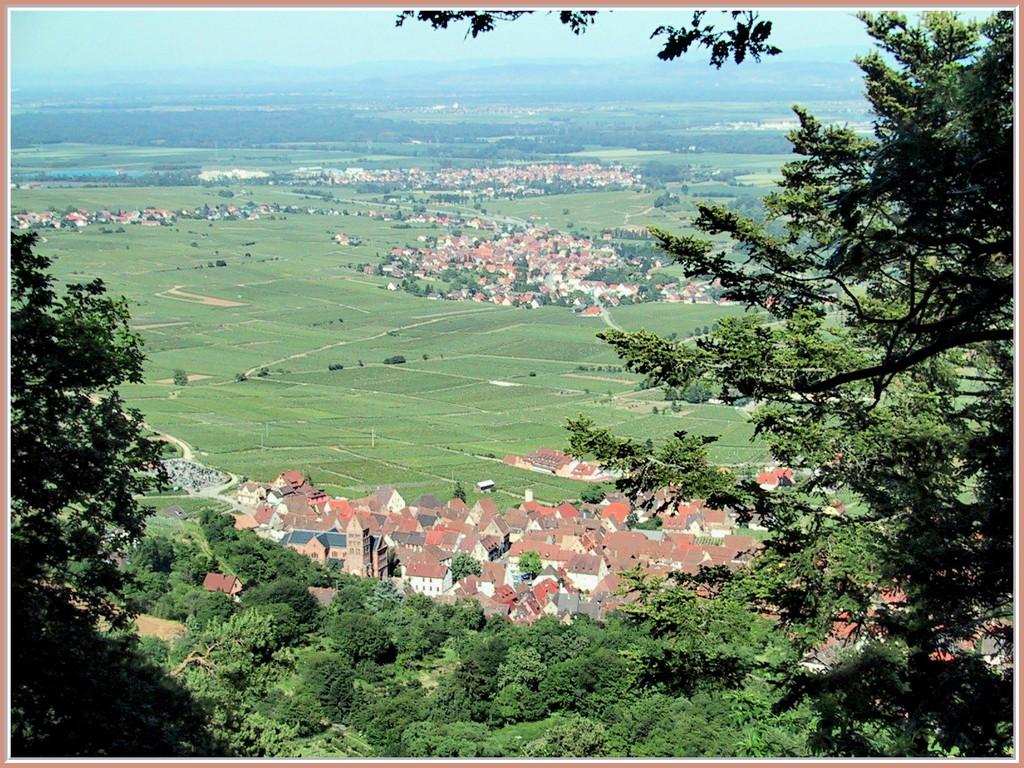 La vue sur Gueberschwihr