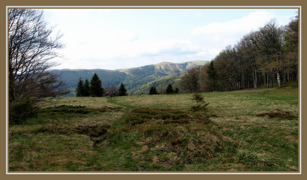 Oberlauchen : vue sur le Markstein