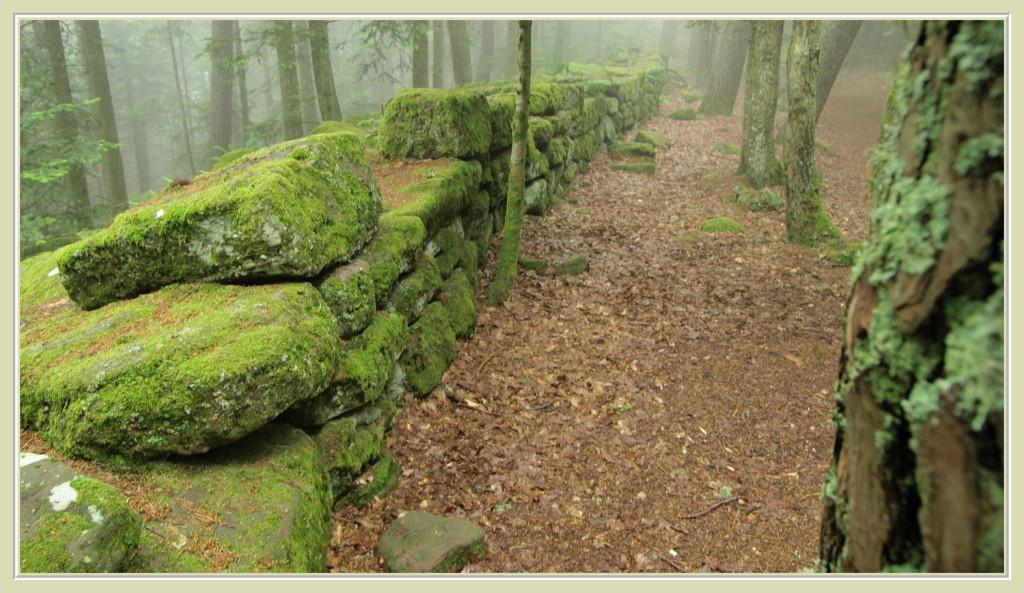 Le long du Mur Païen