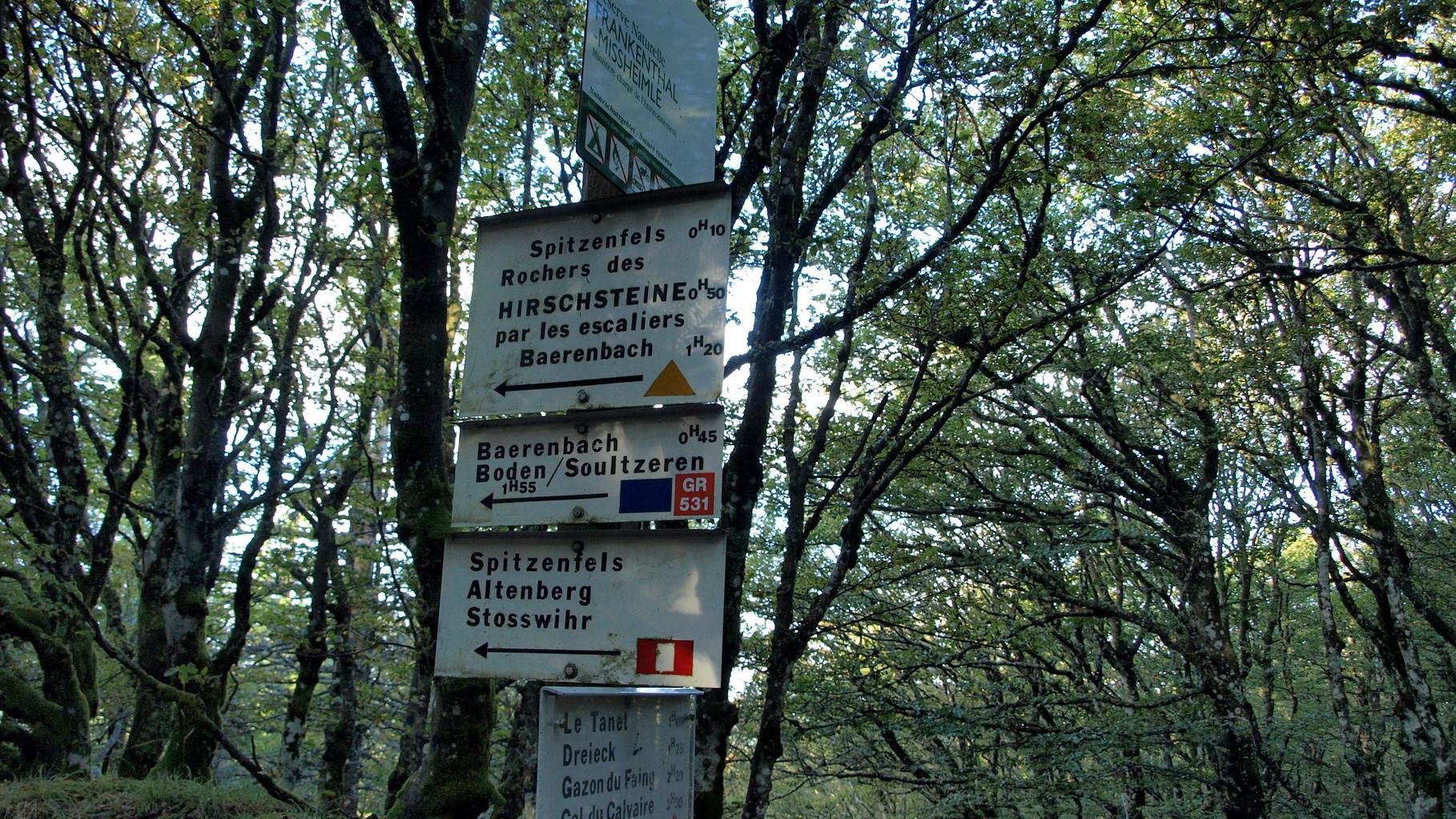 Prendre la direction Spitzenfels et Hirschsteine