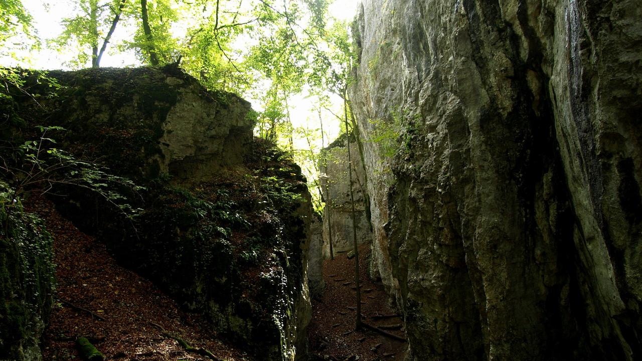 Caverne des Loups