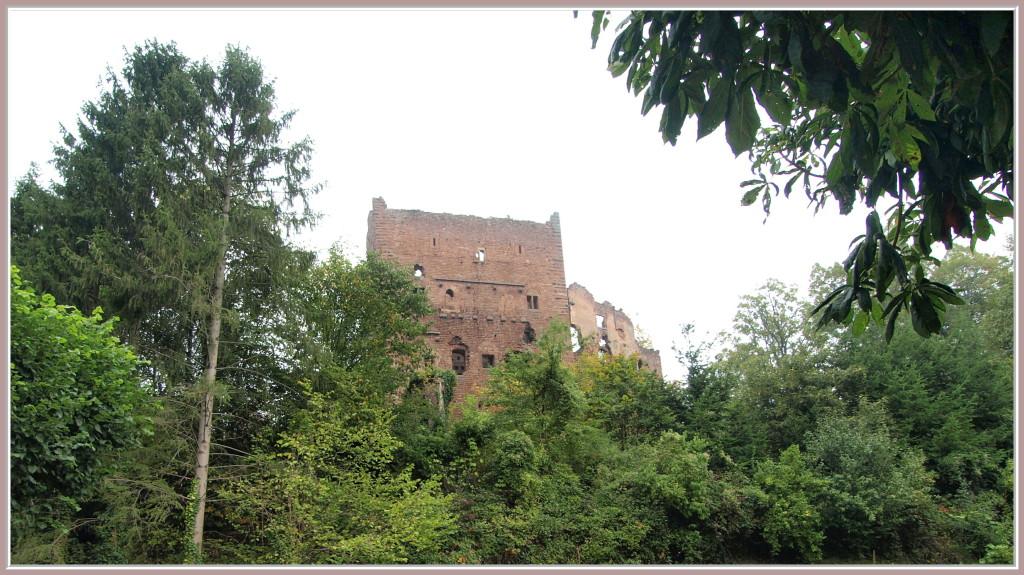 Ruines des Châteaux d'Ottrott