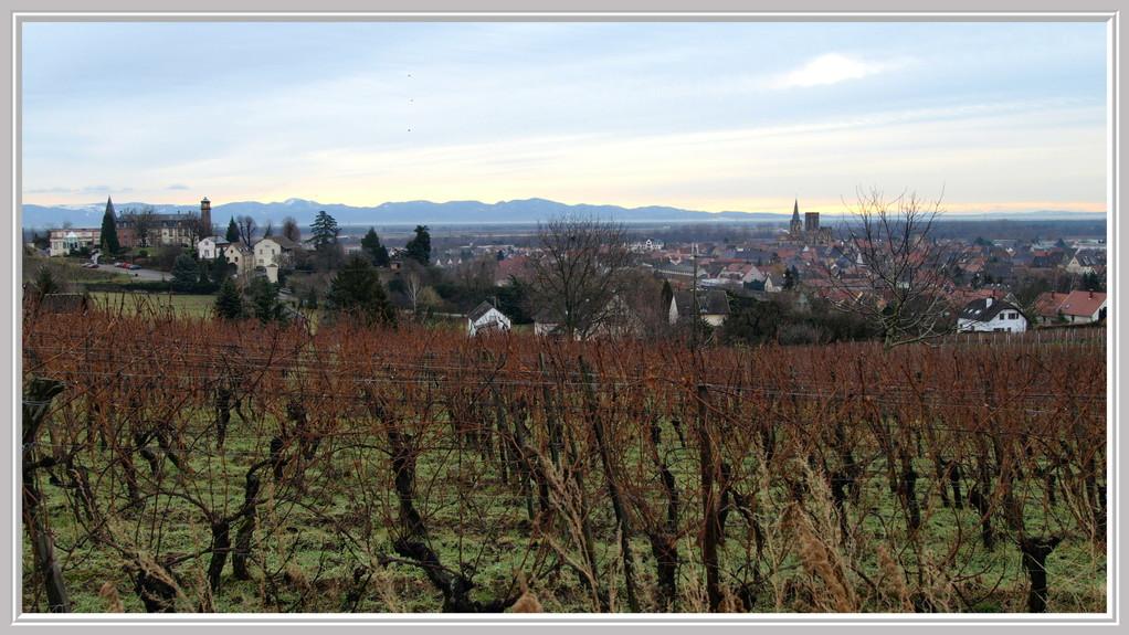 Rouffach : Château d'Isenbourg et ND de l'Assomption au loin la Forêt Noire