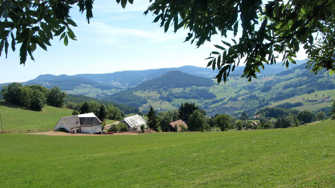 Vue sur le Val d'Orbey